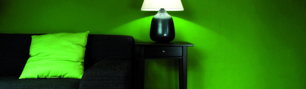Pitture decorative per interni - parete verde